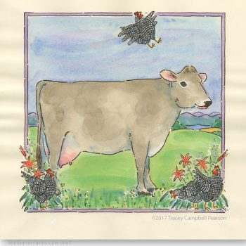 Shelburne-Farms-Cow Shirt-byTraceyCampbellPearson