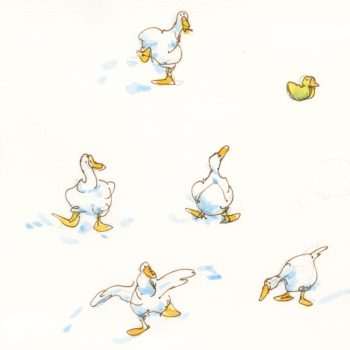 Duck sketches