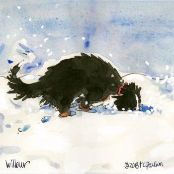 Wilbur-in-snowbank